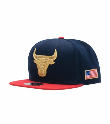 chicago bulls 2 tone fitted